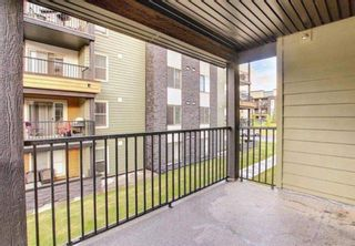 Photo 39: 1214 1317 27 Street SE in Calgary: Albert Park/Radisson Heights Apartment for sale : MLS®# A1142395