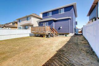 Photo 30: 8230 Saddleridge Drive NE in Calgary: Saddle Ridge Detached for sale : MLS®# A1085120
