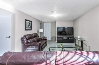 Photo 27: 9737 Elbow Drive SW in Calgary: Haysboro Detached for sale : MLS®# A1088703