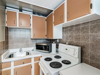 Photo 31: 106 Abalone Place NE in Calgary: Abbeydale Semi Detached for sale : MLS®# A1039180
