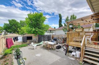 Photo 36: 217 Templemont Drive NE in Calgary: Temple Semi Detached for sale : MLS®# A1120693