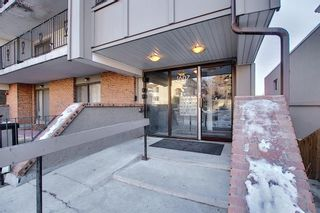Photo 4: 1 1607 26 Avenue SW in Calgary: South Calgary Apartment for sale : MLS®# A1058736