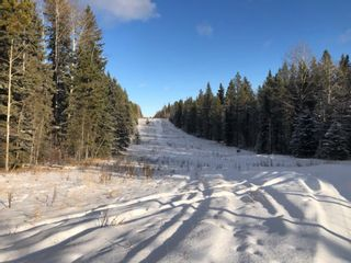 Photo 1: On Range road 8-0  , Section 19, 36, 7, W5: Rural Clearwater County Land for lease : MLS®# A1055389