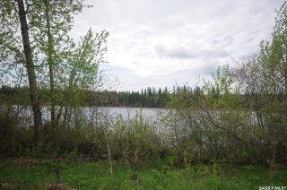 Photo 8: Weiss Lakefront Acreage in Big River: Lot/Land for sale : MLS®# SK834150