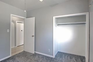 Photo 15: 6415 32 Avenue NW in Calgary: Bowness Detached for sale : MLS®# A1099348