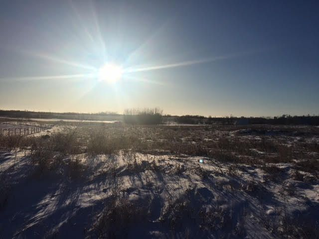 Main Photo:  in Wainwright MD: Silver Willow Estates Land Only for sale (MD of Wainwright)  : MLS®# A1060037