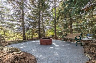 Photo 38: 255123 Woodland Road in Rural Rocky View County: Rural Rocky View MD Detached for sale : MLS®# A1142755