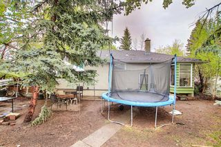 Photo 12: 299 Northmount Drive NW in Calgary: Thorncliffe Detached for sale : MLS®# A1112081
