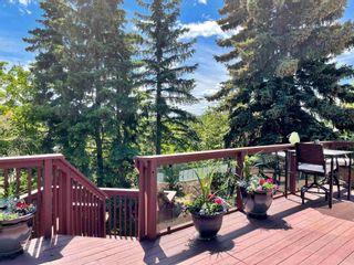Photo 36: 12433 28 Avenue in Edmonton: Zone 16 House for sale : MLS®# E4245223