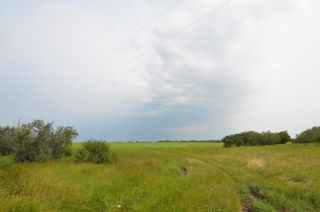 Photo 4: Range Rd 180 & Township Rd 553: Rural Lamont County Rural Land/Vacant Lot for sale : MLS®# E4258170