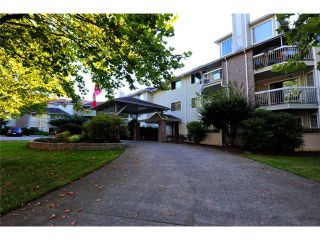 Photo 1: # 309 22514 116TH AV in Maple Ridge: East Central Condo for sale : MLS®# V1041669