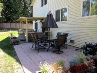 Photo 14: 21155 CUTLER Place in Maple Ridge: Southwest Maple Ridge House for sale : MLS®# R2101980