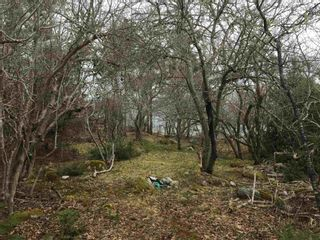 Main Photo: Lot Central Port Mouton in Central Port Mouton: 406-Queens County Vacant Land for sale (South Shore)  : MLS®# 202108377