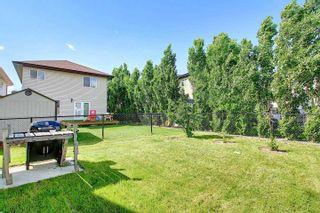 Photo 49: 3240 151 Avenue in Edmonton: Zone 35 House for sale : MLS®# E4250675
