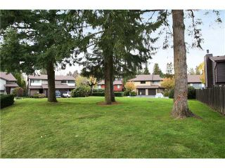 "Photo 10: 3 21550 CHERRINGTON Avenue in Maple Ridge: West Central 1/2 Duplex for sale in ""MAPLE RIDGE ESTATES"" : MLS®# V890073"