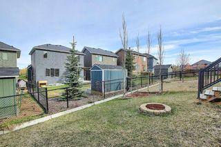 Photo 28: 209 Sunset Common: Cochrane Semi Detached for sale : MLS®# A1104207