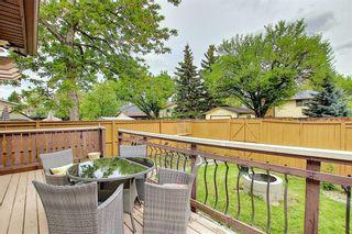 Photo 37: 36 MCKENNA RD SE in Calgary: McKenzie Lake Detached for sale : MLS®# C4300100