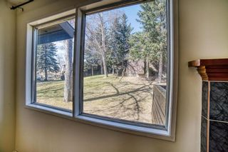 Photo 11: 42 336 Rundlehill Drive NE in Calgary: Rundle Row/Townhouse for sale : MLS®# A1101344