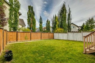 Photo 38: 18 Copperfield Crescent SE in Calgary: Copperfield Detached for sale : MLS®# A1141643