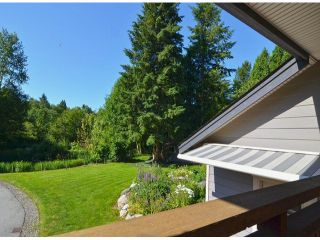 Photo 13: 21964 6TH AV in Langley: Campbell Valley House for sale : MLS®# F1417390