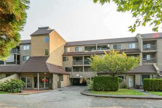 "Main Photo: 219 8120 COLONIAL Drive in Richmond: Boyd Park Condo for sale in ""CHERRY TREE PLACE"" : MLS®# R2538290"