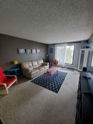 Photo 8: 322 3610 43 Avenue in Edmonton: Zone 29 Condo for sale : MLS®# E4255175