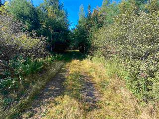 Photo 5: Lot Seaview Road in Seaview: 305-Richmond County / St. Peters & Area Vacant Land for sale (Highland Region)  : MLS®# 202124486