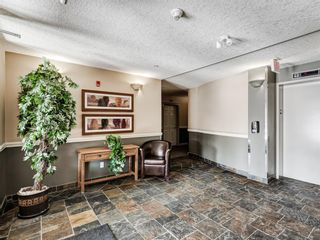 Photo 26: 307 2 HEMLOCK Crescent SW in Calgary: Spruce Cliff Apartment for sale : MLS®# A1076782