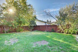 Photo 31:  in Edmonton: Zone 29 House for sale : MLS®# E4262869