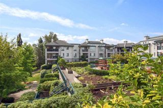 "Main Photo: 302 19528 FRASER Highway in Langley: Cloverdale BC Condo for sale in ""Fairmont"" (Cloverdale)  : MLS®# R2554897"