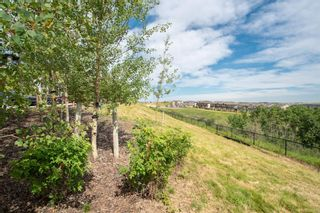 Photo 29: 204 16 SAGE HILL Terrace NW in Calgary: Sage Hill Apartment for sale : MLS®# A1022350