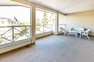 """Photo 29: 310 20120 56 Avenue in Langley: Langley City Condo for sale in """"Blackberry Lane"""" : MLS®# R2564037"""