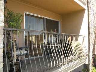 Photo 6: HILLCREST Condo for sale : 1 bedrooms : 3980 8th Ave #105 in San Diego