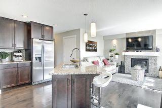 Photo 6: 3664 8 Street in Edmonton: Zone 30 House for sale : MLS®# E4253213
