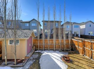 Photo 39: 148 Copperfield Common SE in Calgary: Copperfield Detached for sale : MLS®# A1079800