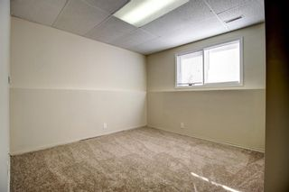 Photo 17: 148 VENTURA Way NE in Calgary: Vista Heights Detached for sale : MLS®# A1052725