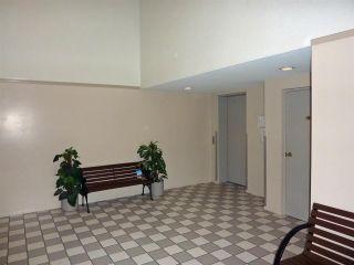 Photo 3: 204 22222 119 Avenue in Maple Ridge: West Central Condo for sale : MLS®# R2459367