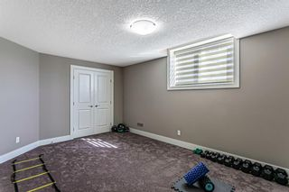Photo 38: 179 Nolancrest Heights NW in Calgary: Nolan Hill Detached for sale : MLS®# A1083011