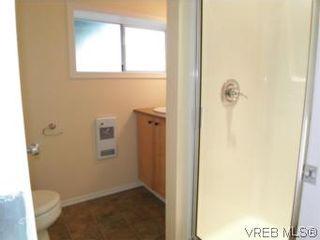 Photo 11: 1607 Chandler Ave in VICTORIA: Vi Fairfield East Half Duplex for sale (Victoria)  : MLS®# 504379