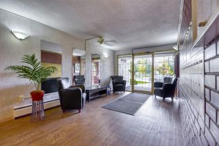 "Photo 18: 308 12096 222 Street in Maple Ridge: West Central Condo for sale in ""CANUCK PLAZA"" : MLS®# R2541037"