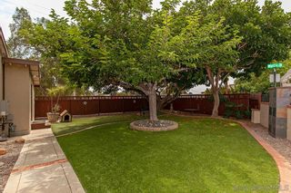 Photo 22: SAN DIEGO House for sale : 4 bedrooms : 3505 Wilson Avenue