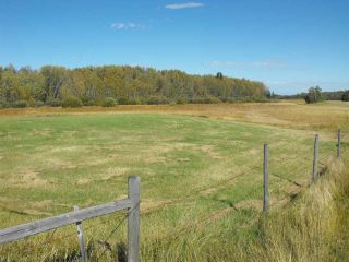 Photo 3: 541043 Hwy 881: Rural Two Hills County House for sale : MLS®# E4214894