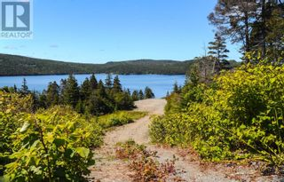 Photo 6: 1313-1315 Main Road in Dunville/Harbour Drive: Vacant Land for sale : MLS®# 1232516