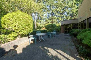 """Photo 30: 203 333 WETHERSFIELD Drive in Vancouver: South Cambie Condo for sale in """"Langara Court"""" (Vancouver West)  : MLS®# R2503583"""