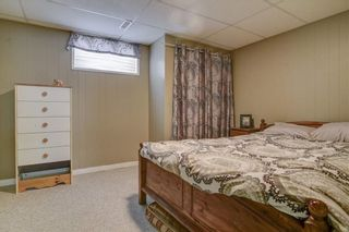 Photo 26: 11711 40 Avenue in Edmonton: Zone 16 House for sale : MLS®# E4247223