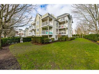 Photo 3: 310 20189 54 Avenue in Langley: Langley City Condo for sale : MLS®# R2533800