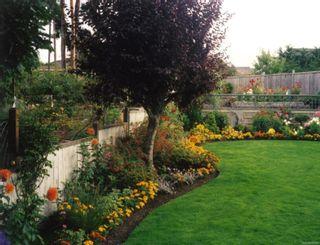 Photo 37: 249 Kingfisher Pl in : Na North Nanaimo House for sale (Nanaimo)  : MLS®# 866388