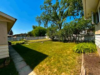 Photo 7: 101 Mayday Crescent: Wetaskiwin House for sale : MLS®# E4253724