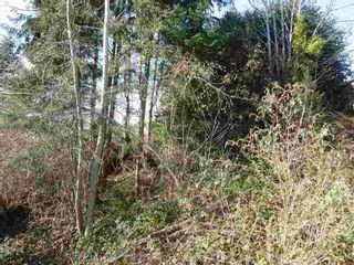 Photo 7: Lot 20 S Fletcher Road in Sunshine Coast: Home for sale : MLS®# R2136567