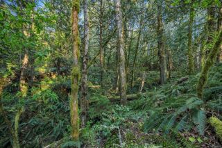 Photo 15: 1966 Gillespie Rd in : Sk 17 Mile House for sale (Sooke)  : MLS®# 878837